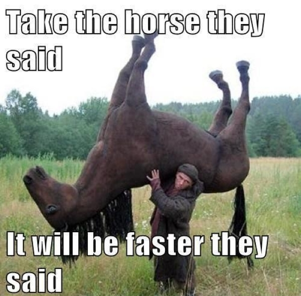 Take the horse they said, it will be faster they said